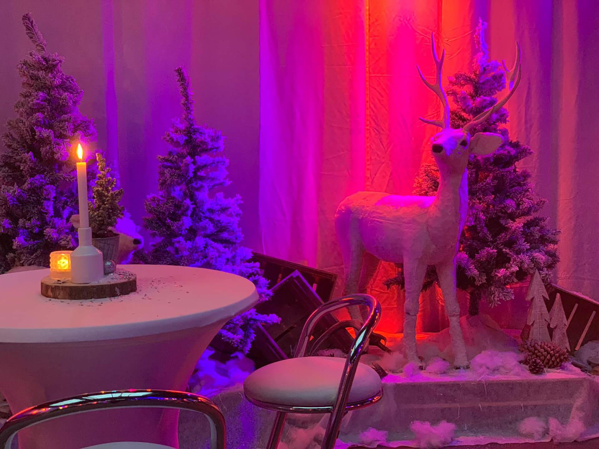 Winterwonderland themafeest